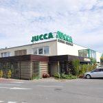 00_usługowy centrum ogrodnicze Jucca Tarnowo Podgórne (7)