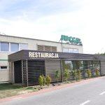 usługowy centrum ogrodnicze Jucca Tarnowo Podgórne (6)